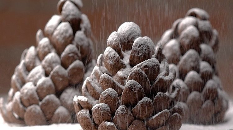These Pine Cone Cookies Are Almost Too Cute To Eat