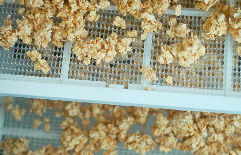 rolled oats | dehydrator recipes